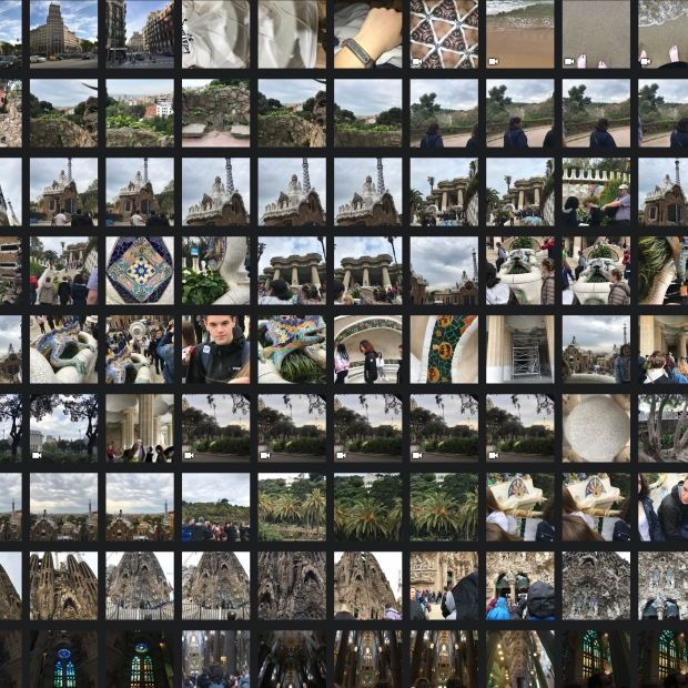 digital organizing-photo grid showing 81 thumbnails of vacation in spain